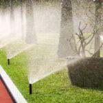Giardiniere a Treviso manutenzioni irrigazione
