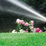 Giardiniere a Treviso manutenzioni irrigazione 2